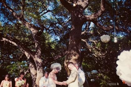 tree hanging1